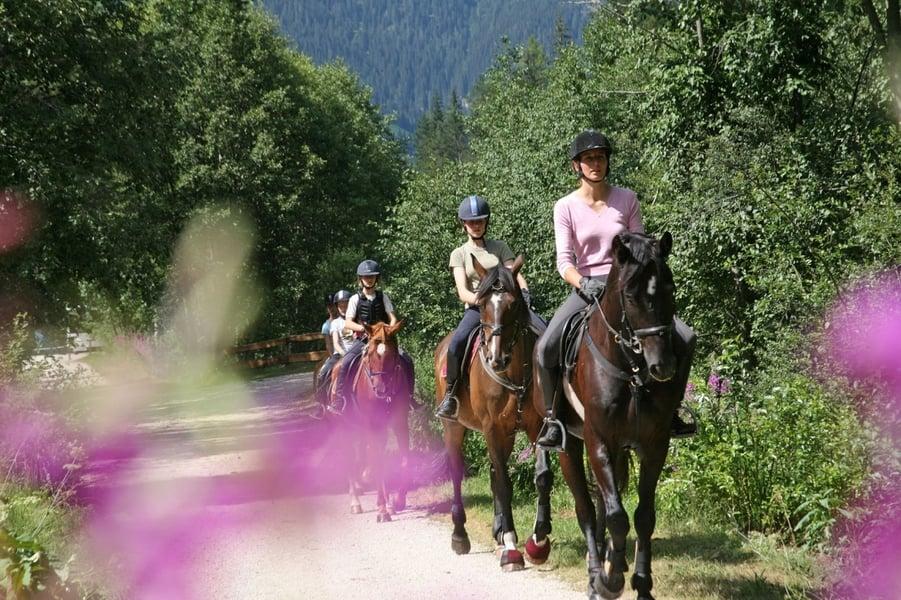 Equitazione Residence San Cassiano Badia Dolomiti